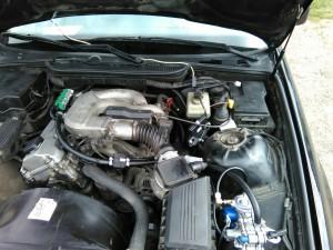 gbo na BMW 318 (2)